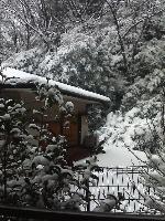 自宅の窓からの雪景色